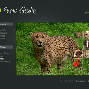 Photo Studio Flash Template