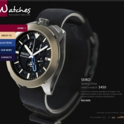 Watches Facebook Flash CMS Template