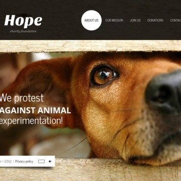 Animal Shelter Flash Template