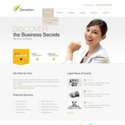 Business Flash CMS Template