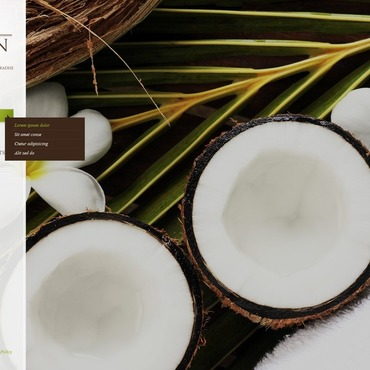 Spa Accessories Flash CMS Template