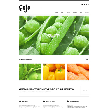Vegetable Responsive WordPress Theme