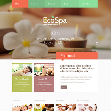 Spa Accessories Responsive Joomla Template #48406