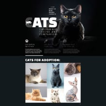 Cat Responsive Website Template