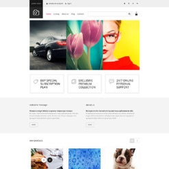 Stock Photo Responsive VirtueMart Template