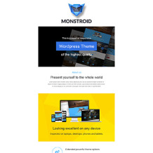 Business Responsive Newsletter Template